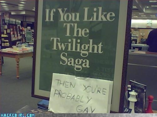 If you like the Twilight Saga...