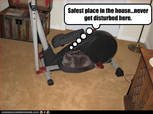 exercise,gym,quiet,safe