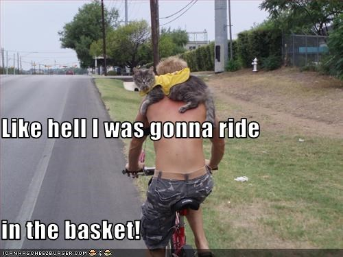 Like hell I was gonna ride in the basket!