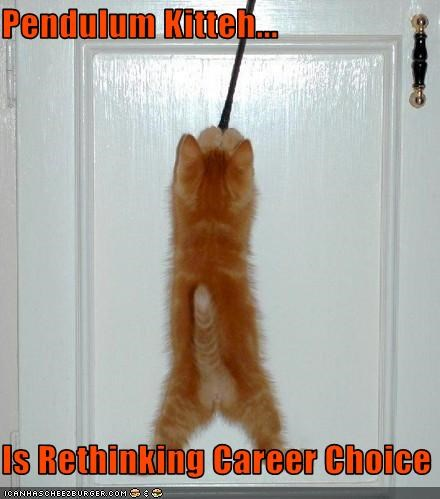 Pendulum Kitteh...   Is Rethinking Career Choice