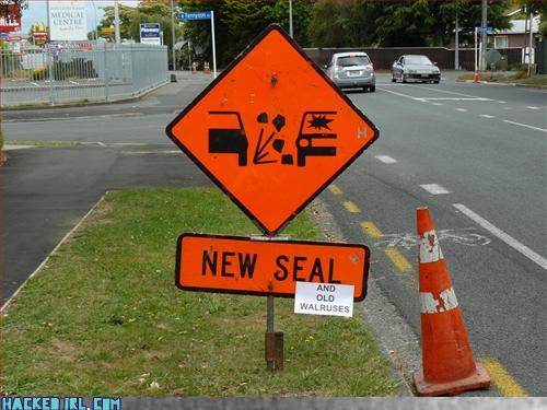 New Seal Old Walruses