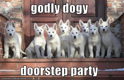 godly dogy  doorstep party