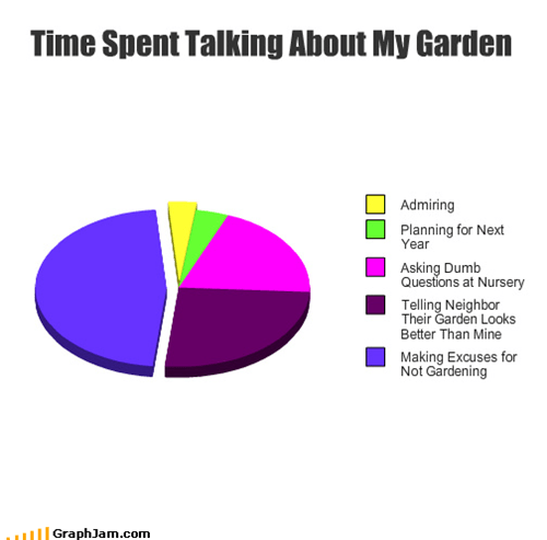 Time Spent Talking About My Garden