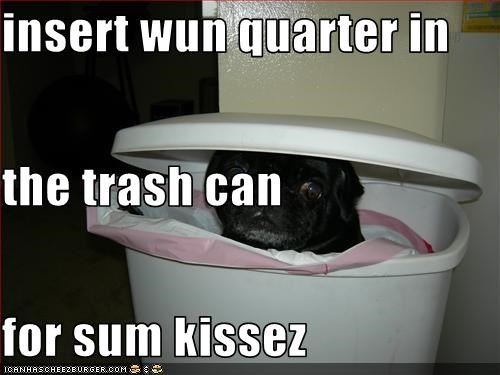 insert wun quarter in the trash can for sum kissez