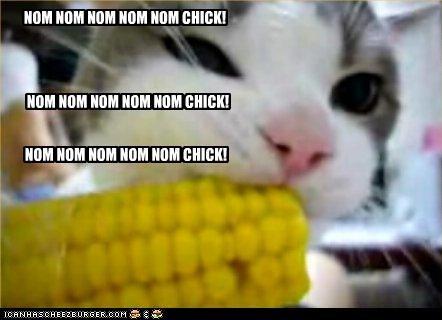 NOM NOM NOM NOM NOM CHICK!