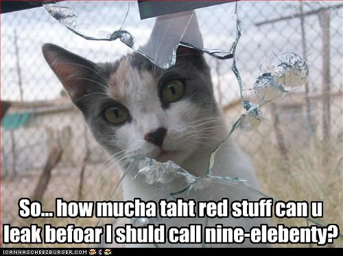 So... how mucha taht red stuff can u leak befoar I shuld call nine-elebenty?