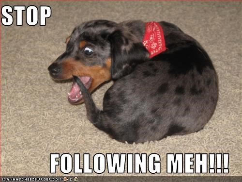 STOP   FOLLOWING MEH!!!