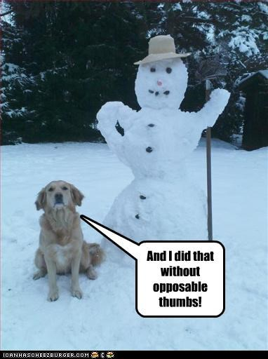 And I did that without opposable thumbs!