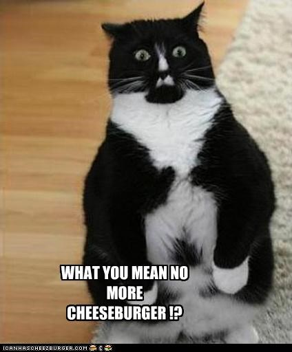 WHAT YOU MEAN NO MORE CHEESEBURGER !?