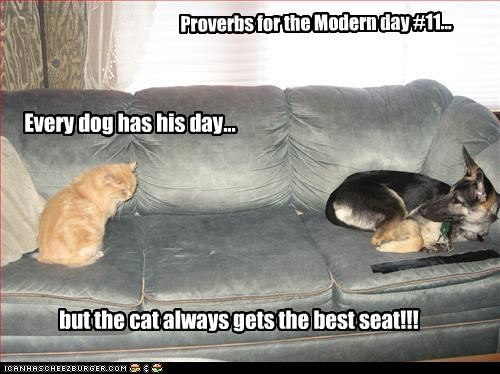 Proverbs for the Modern day #11...