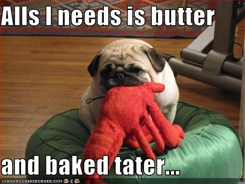 Alls I needs is butter  and baked tater...