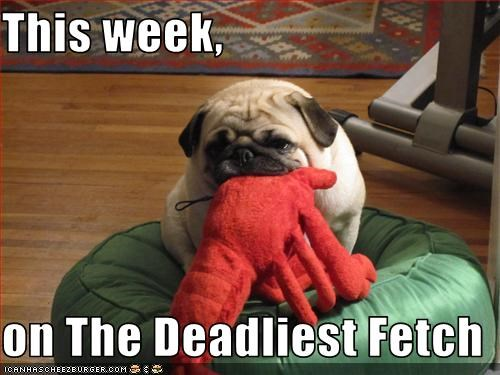 This week,   on The Deadliest Fetch