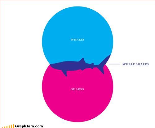 animals,sharks,venn diagram,whales