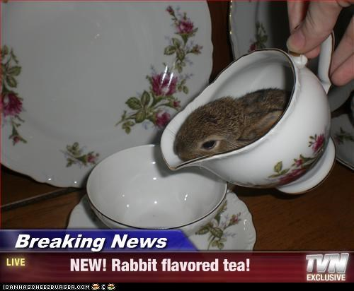 Breaking News -          NEW! Rabbit flavored tea!
