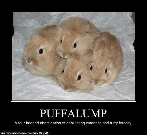 PUFFALUMP