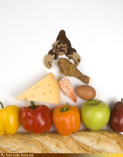 basic food groups,bread,dairy,fruit,meat,vegetable