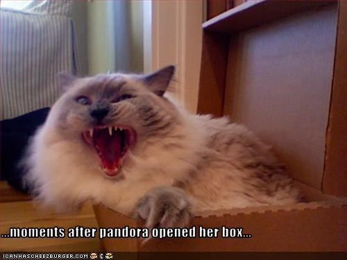 ...moments after pandora opened her box...