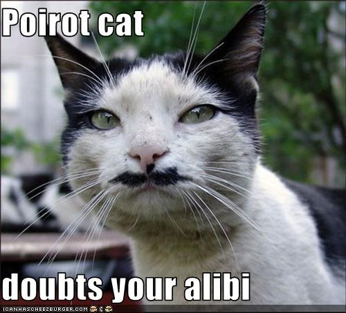 Poirot cat   doubts your alibi