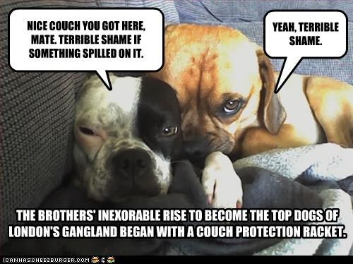 THE BROTHERS' RISE TO BECOME TOP DOGS OF LONDON'S GANGLAND BEGAN WITH A COUCH PROTECTION RACKET.