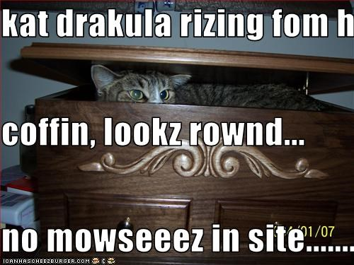 kat drakula rizing fom his coffin, lookz rownd... no mowseeez in site...................