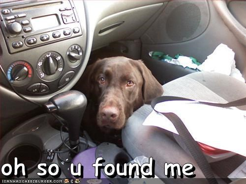 oh so u found me