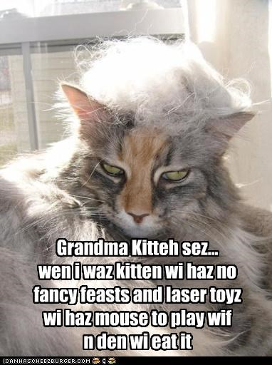 Grandma Kitteh sez... wen i waz kitten wi haz no  fancy feasts and laser toyz wi haz mouse to play wif n den wi eat it