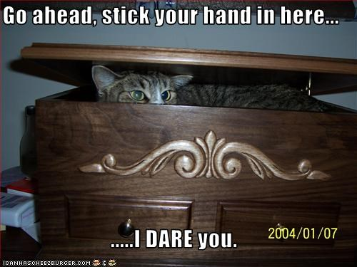 Go ahead, stick your hand in here...  .....I DARE you.