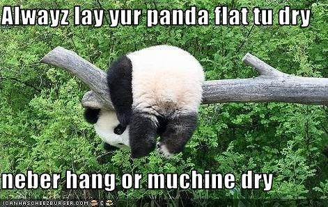 Alwayz lay yur panda flat tu dry  neber hang or muchine dry