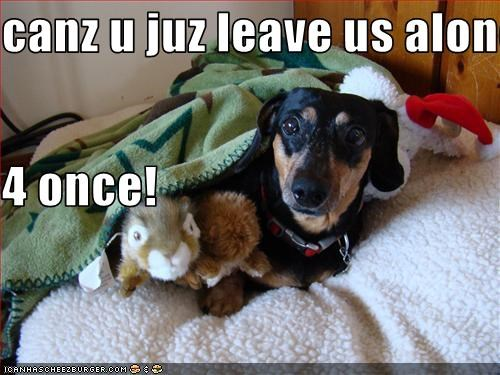 canz u juz leave us alone 4 once!