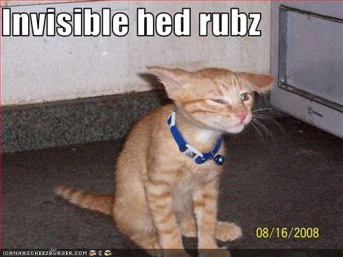 Invisible hed rubz