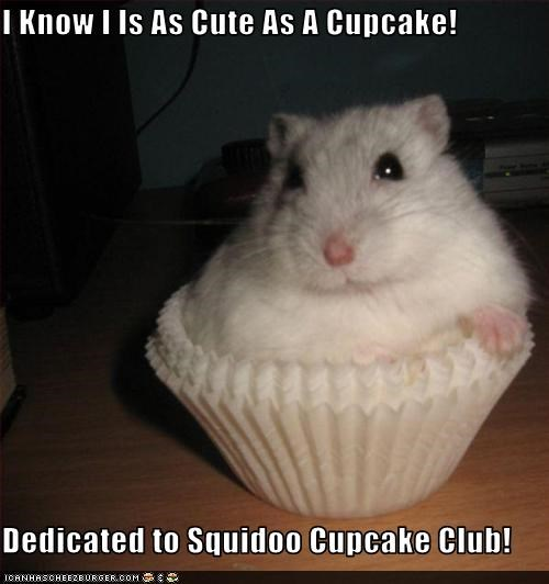 I Know I Is As Cute As A Cupcake!  Dedicated to Squidoo Cupcake Club!