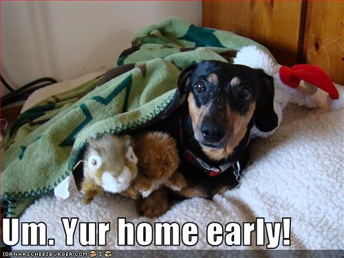 Um. Yur home early!