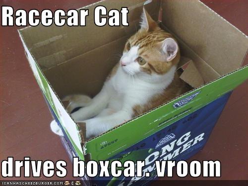 Racecar Cat  drives boxcar. vroom