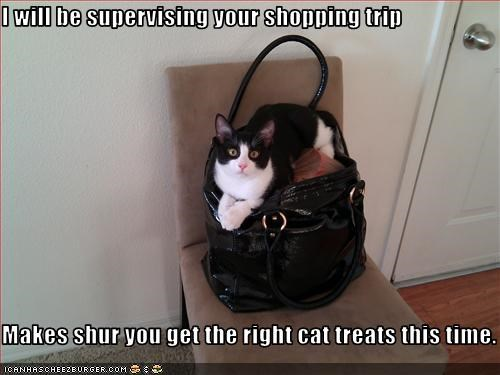 I will be supervising your shopping trip  Makes shur you get the right cat treats this time.