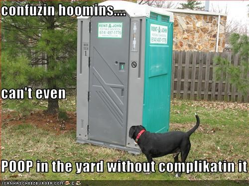 confuzin hoomins.... can't even  POOP in the yard without complikatin it