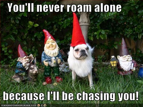 You'll never roam alone   because I'll be chasing you!