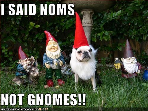 I SAID NOMS  NOT GNOMES!!