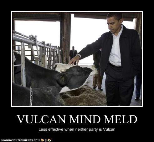 animals,barack obama,cows,Star Trek