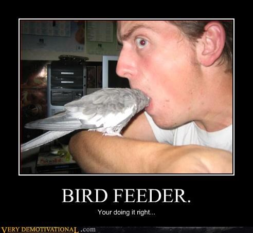 eww,bird feeder,mouth