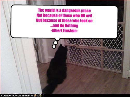 The world is a dangerous place Not because of those who DO evil But because of those who look on ...and do Nothing -Albert Einstein- Sometimes it takes a Genius to say the ordinary