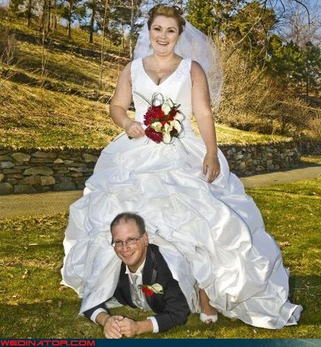 Adult Baby,Crazy Brides,crazy groom,doggystyle,eww,fashion is my passion,surprise,upskirt,were-in-love,whipped,wtf