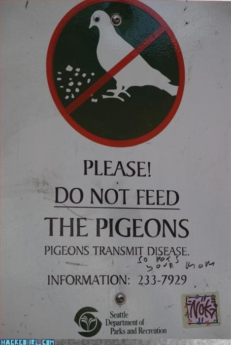 Pigeons and Moms
