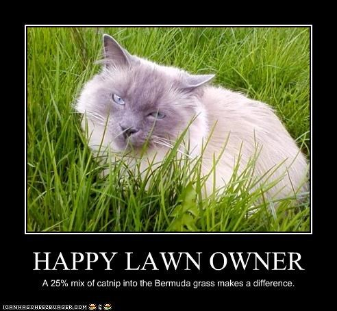 HAPPY LAWN OWNER