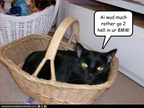 Wer u goin in a handbasket?