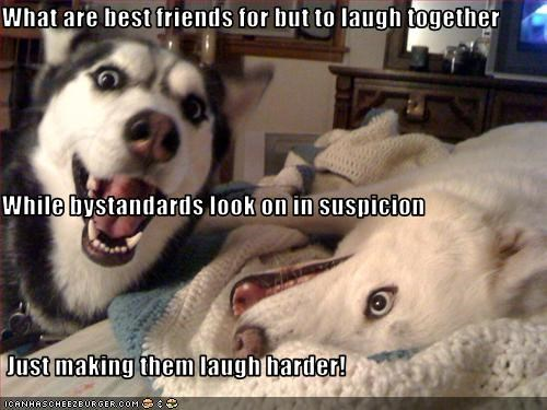 What are best friends for but to laugh together While bystandards look on in suspicion  Just making them laugh harder!