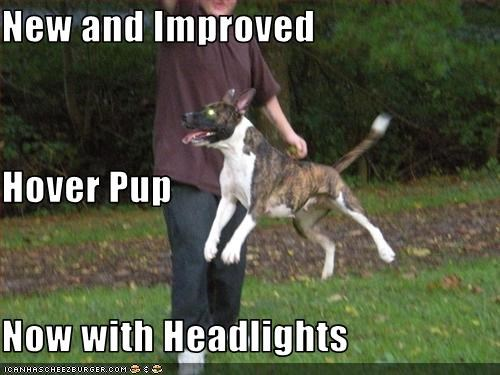 New and Improved Hover Pup Now with Headlights