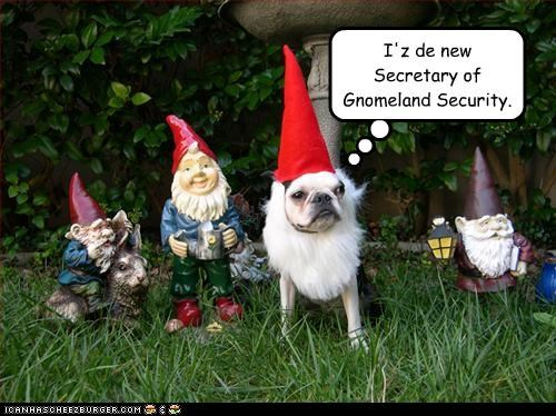 beard,french bulldogs,gnomes,hat,outside