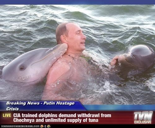 Breaking News - Putin Hostage Crisis - CIA trained dolphins demand withdrawl from Chechnya and unlimited supply of tuna