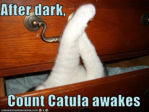 After dark,  Count Catula awakes