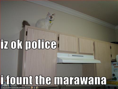 iz ok police i fount the marawana